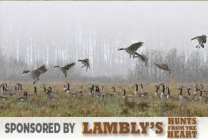 hunter-nation-dream-hunt-2020-08-lamblys-hunts-from-the-heart-goose-hunt-04-544