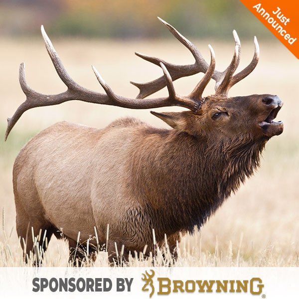 hunter-nation-dream-hunt-2020-03-browning-elk-hunt-01-600x600